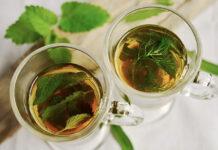 Dlaczego warto pić zieloną herbatę
